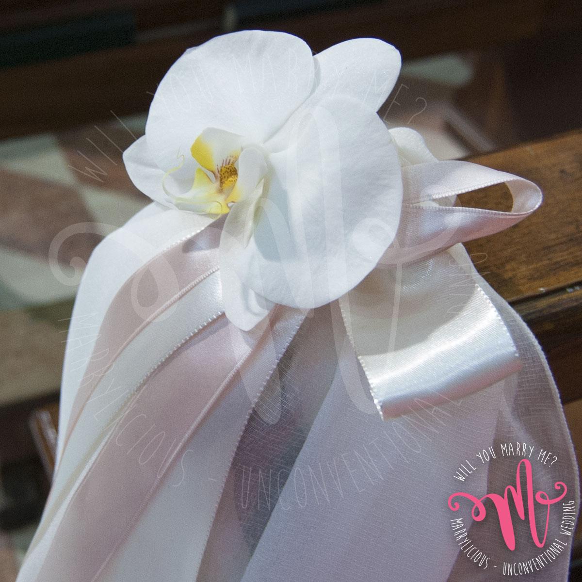 orchidea_corsia