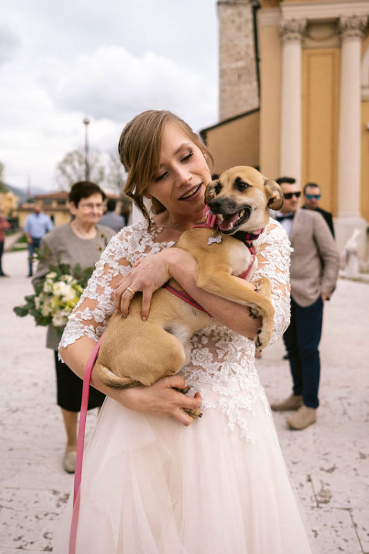 cane sposi