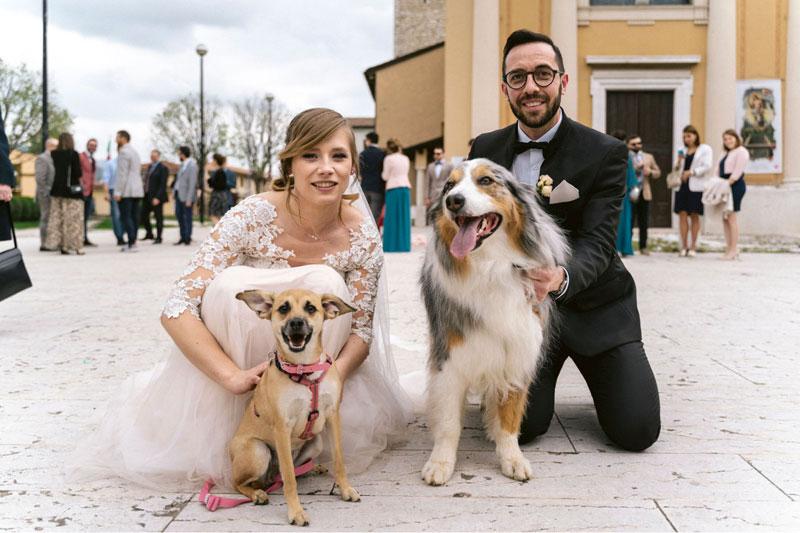 sposi con cani